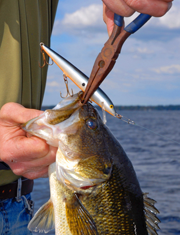 "Welcome fisherman to the Great Lakes Fisherman's Digest Fishing ""Tips and Tactics"" section of our site. We at Fisherman's Digest are committed to giving you the most complete information that we can deliver."